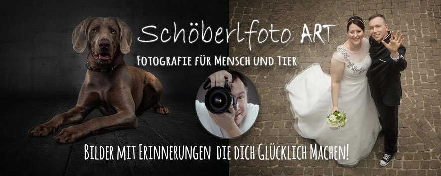 bester Fotograf